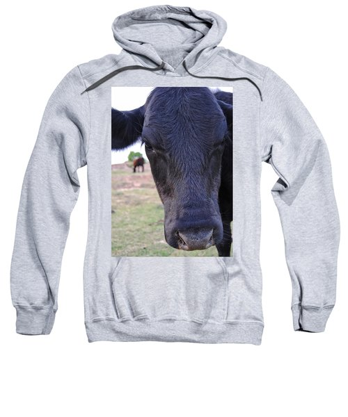Portrait Of A Cow Sweatshirt