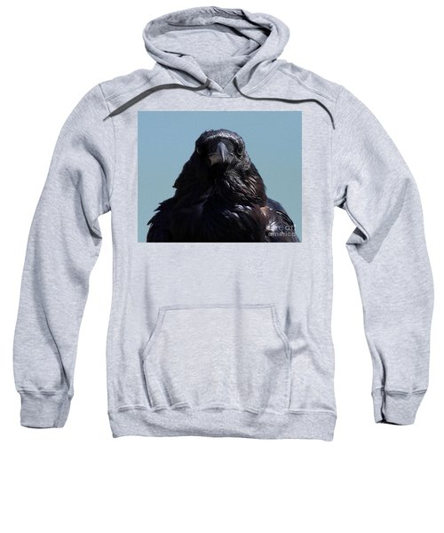Portrait Of A Raven Sweatshirt