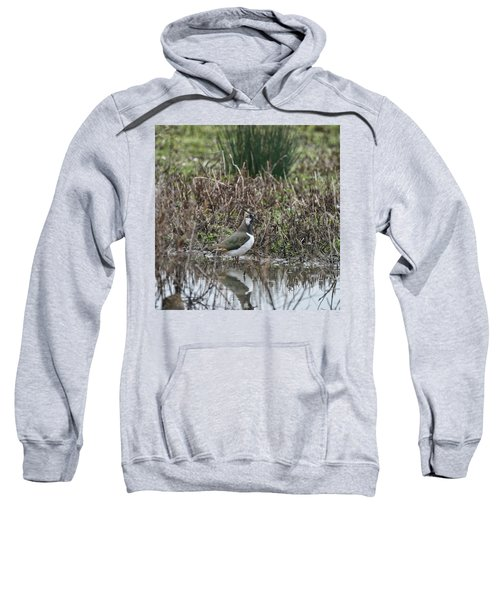 Portrait Of Beautiful Lapwing Bird Seen Through Reeds On Side Of Sweatshirt by Matthew Gibson