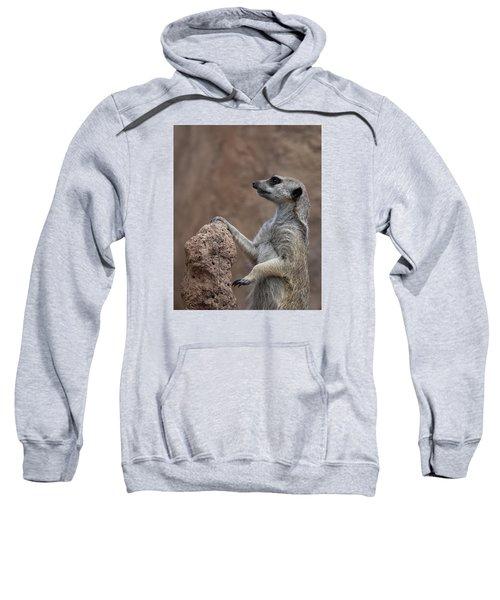 Pose Of The Meerkat Sweatshirt