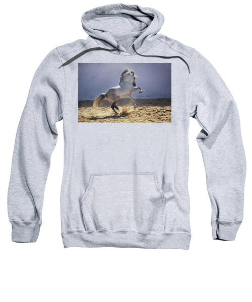 Power In Motion Sweatshirt
