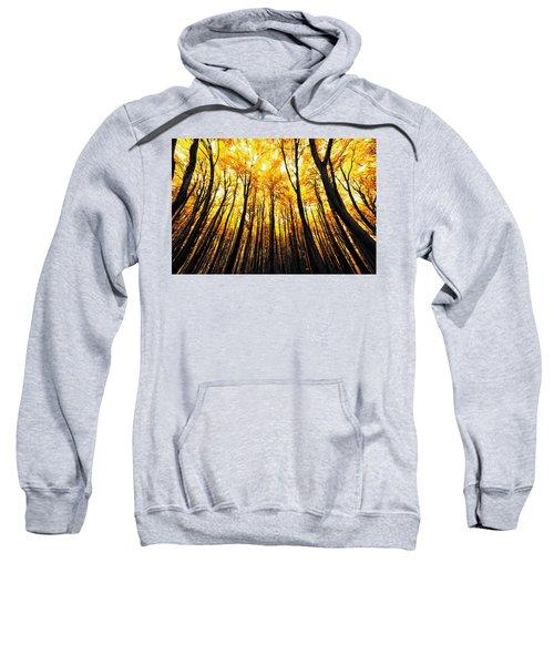 Power Of The Sun Sweatshirt