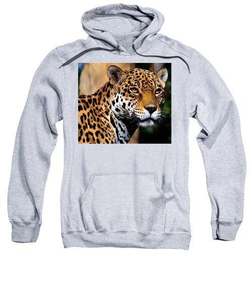Powerful Sweatshirt