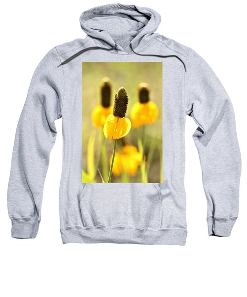 Prairie Coneflower In Morning Light Sweatshirt
