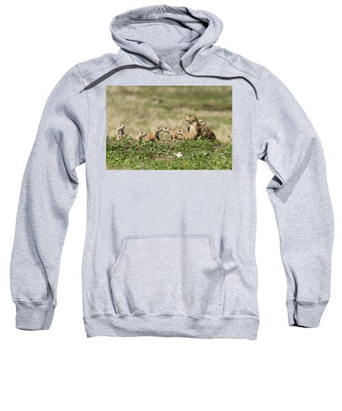 Prairie Dog Family 7270 Sweatshirt