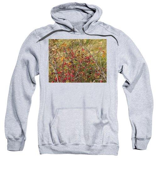 Prairie Rosehips Sweatshirt