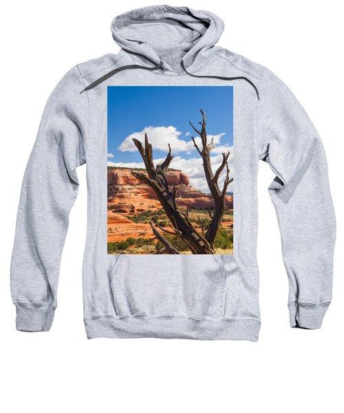 Preserved Sweatshirt