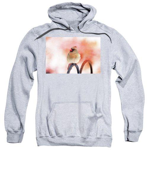 Pretty Cardinal Sweatshirt