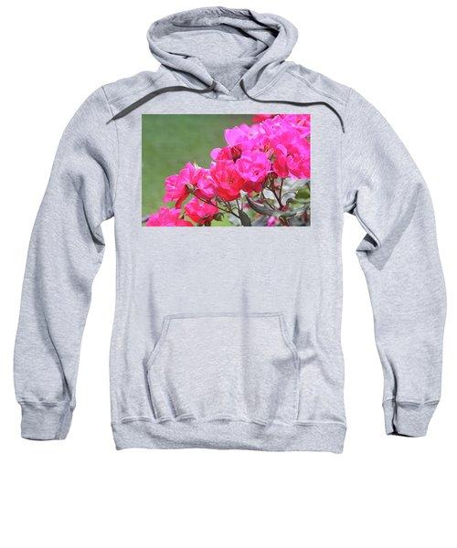 Pretty Pink Roses Sweatshirt