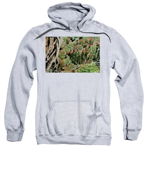 Prickly Pear Revival Sweatshirt