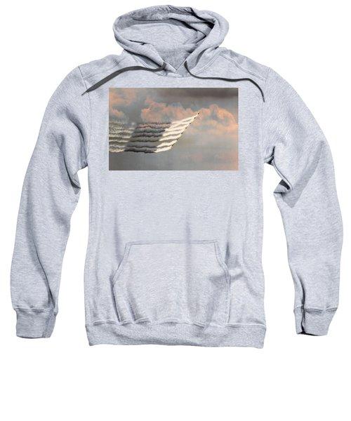 Professionalism Of Excellence Sweatshirt