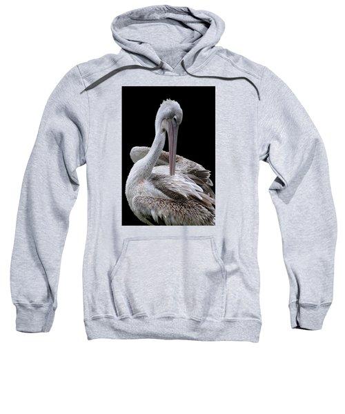 Prospecting - Pelican Sweatshirt