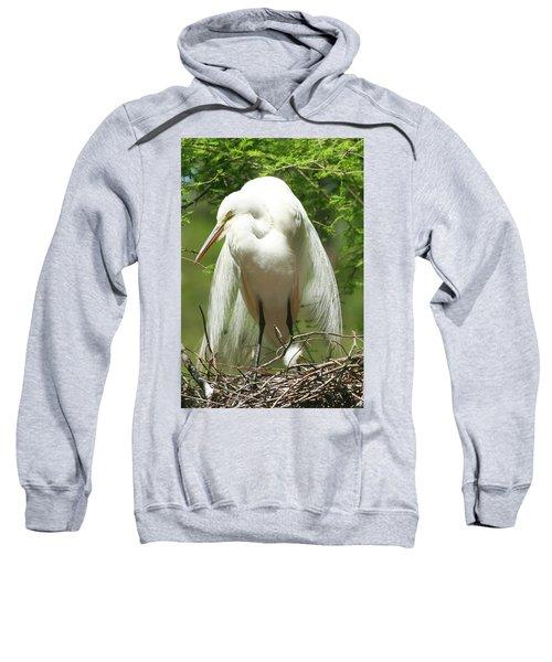 Protecting Sweatshirt