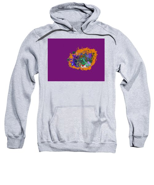 Puff Of Color Sweatshirt