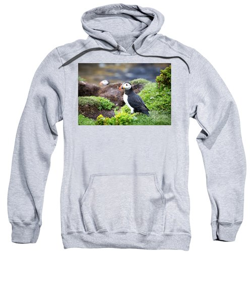 Puffin  Sweatshirt by Jane Rix