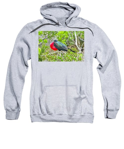 Puffing Up When Courting Sweatshirt