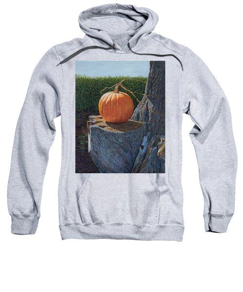 Pumpkin On A Dead Willow Sweatshirt
