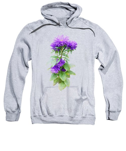 Purple Aster Sweatshirt