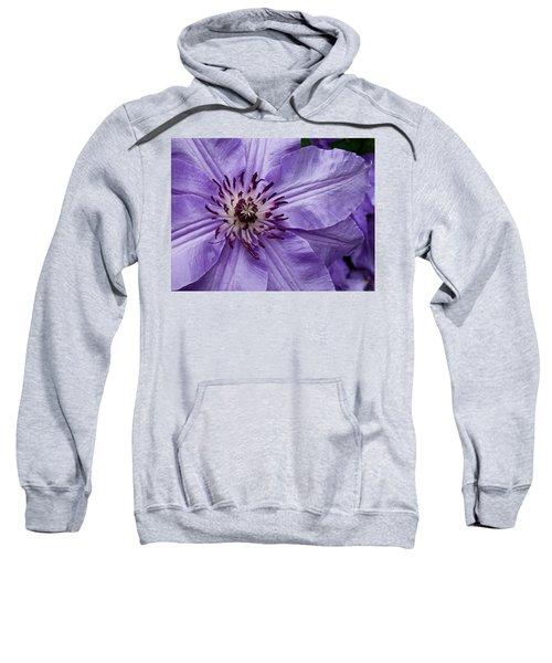 Purple Clematis Blossom Sweatshirt