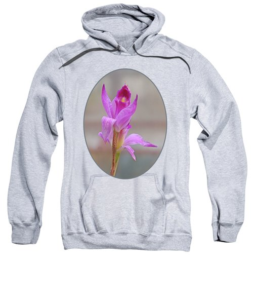 Purple Delight Sweatshirt by Gill Billington
