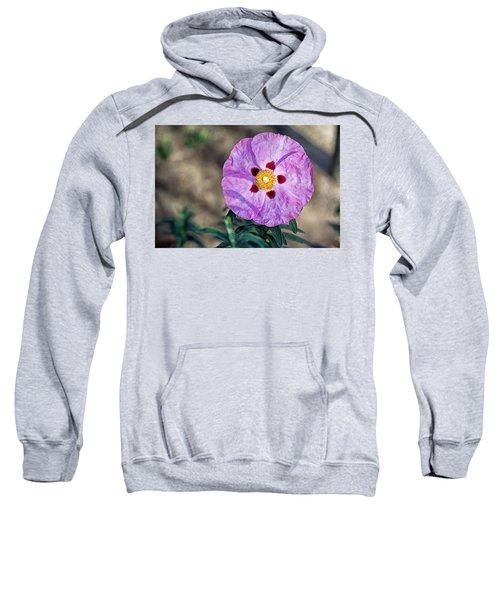 Purple Rockrose Sweatshirt