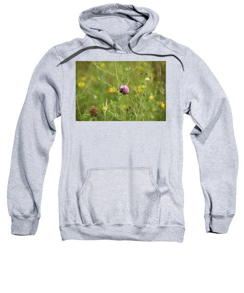 Purple Flower And Bee Sweatshirt