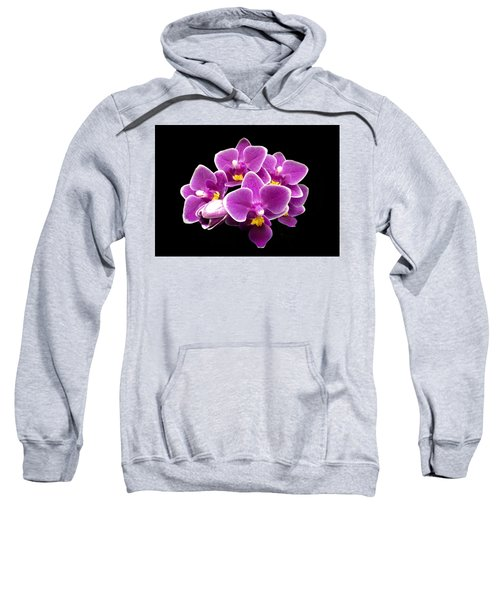 Purple Orchid Sweatshirt