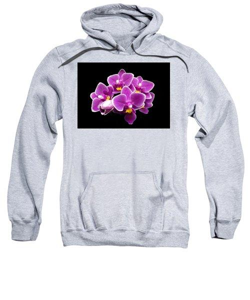 Purple Orchid Sweatshirt