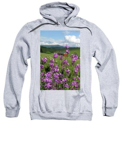 Purple Wild Flowers On Field Sweatshirt