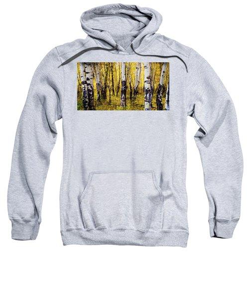 Quakies In Autumn Sweatshirt