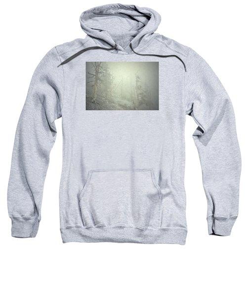 Quiet Type Sweatshirt