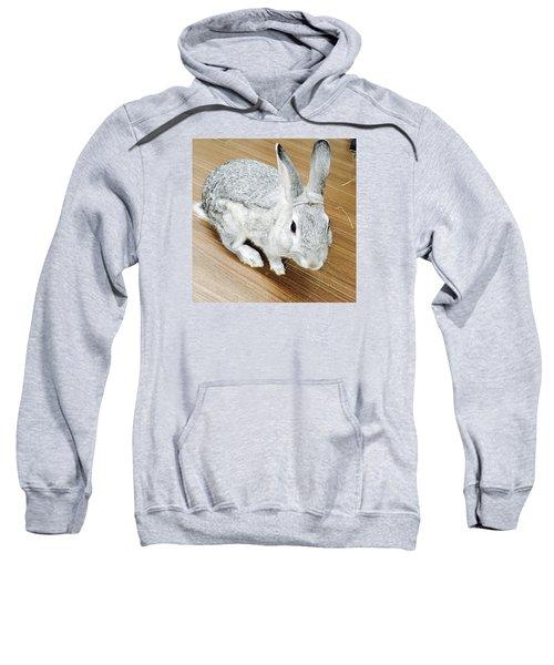 Rabbit Sweatshirt by Nao Yos