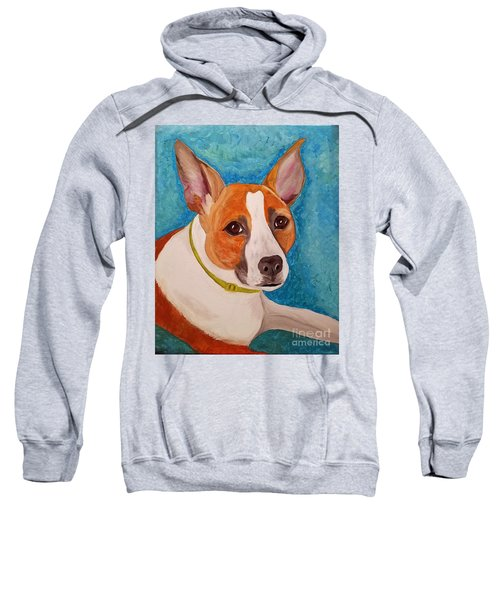 Radar  Sweatshirt