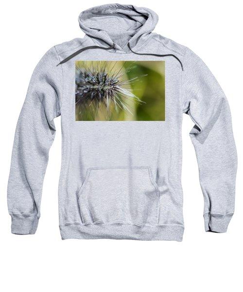 Rain Drops - 9760 Sweatshirt