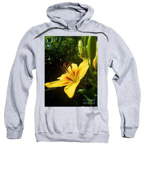 Rain Kissed Tiger Lily Sweatshirt