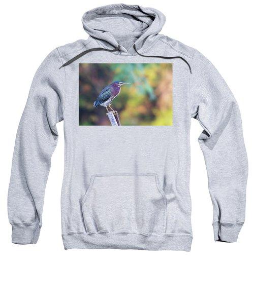 Rainbow Heron Sweatshirt