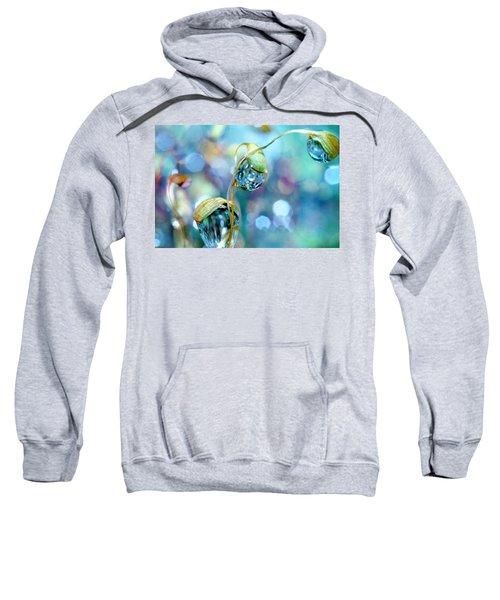 Rainbow Moss Drops Sweatshirt