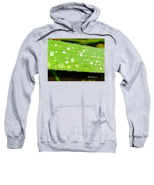 Raindrops On Leaf Sweatshirt