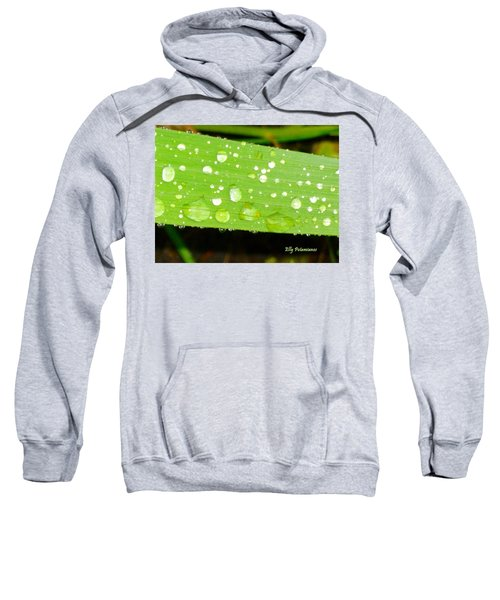 Raindrops On Leaf Sweatshirt