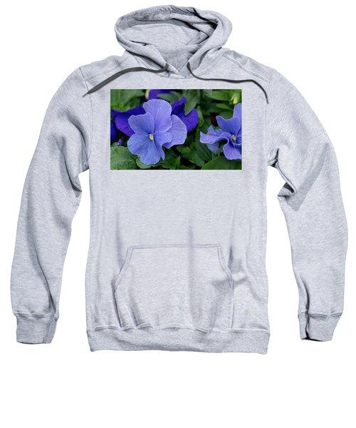 Raindrops On Purple Pansy Sweatshirt