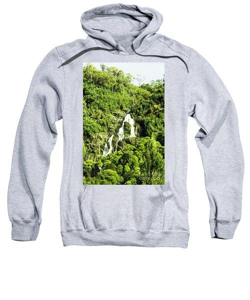 Rainforest Rapids Sweatshirt
