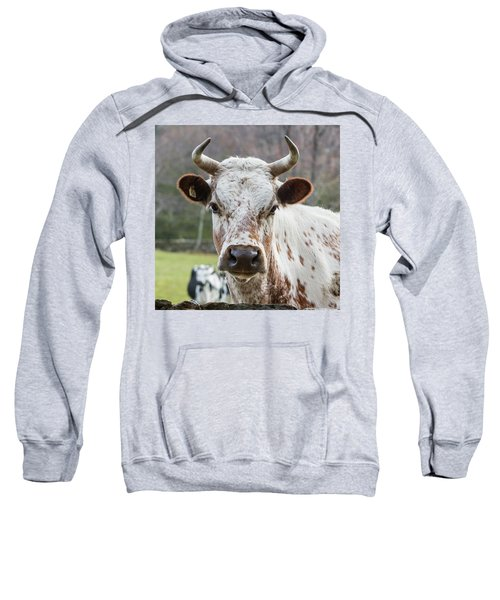 Sweatshirt featuring the photograph Randall Cow by Bill Wakeley