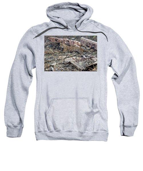 Ranthambore Apparition Sweatshirt