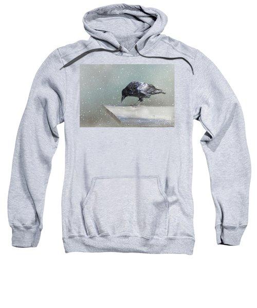 Raven In Winter Sweatshirt