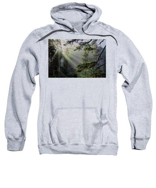 Morning Rays Through An Oregon Rain Forest Sweatshirt