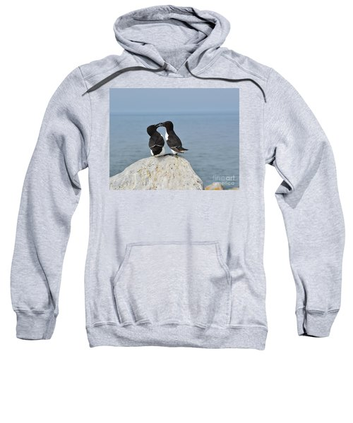 Razorbills In Love Sweatshirt