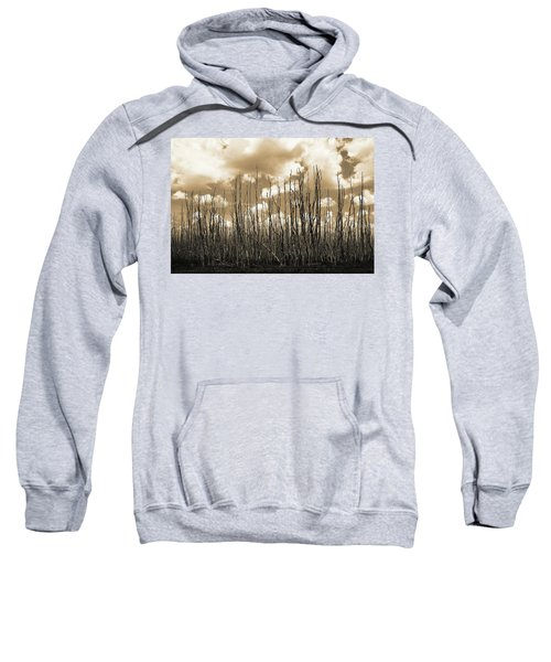 Reaching To The Sky Sweatshirt