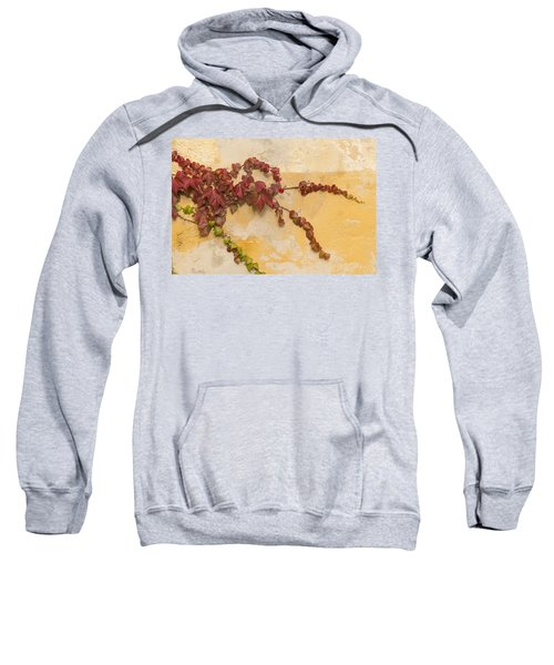 Reaching Sweatshirt