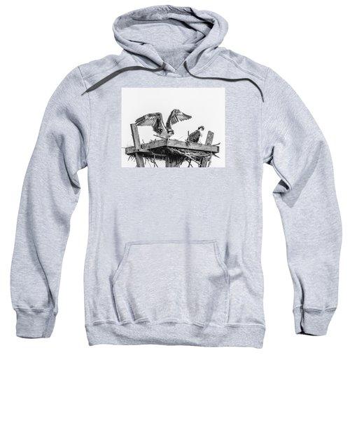 Ready To Fly Bw Sweatshirt