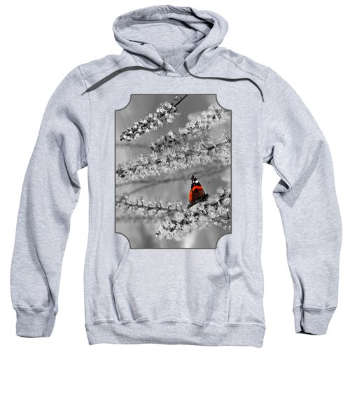 Red Admiral On White Blossom Sweatshirt